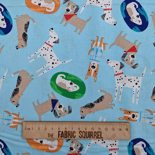 Turquoise Multidirectional Dog Fabric - Best Friends Fur Ever
