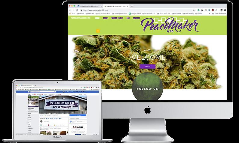 peacemaker computer screenshot.png