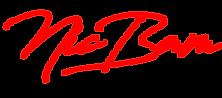 Nic Bam 2020 logo-red.png
