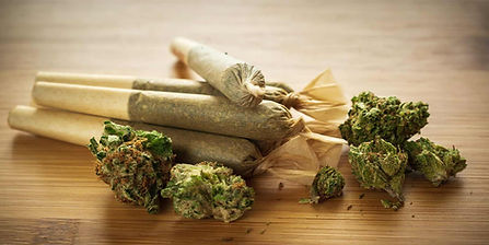 fresh-pre-rolled-joints-and-cannabis-nug