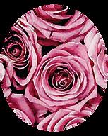 la vie en rose.png