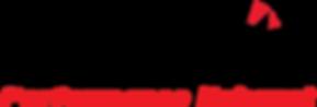 dynomax logo.png