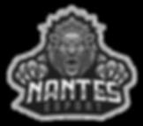 logo_Nantes_Esport_modifié.png