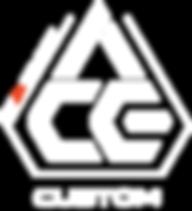 ace custom.png