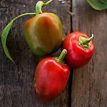 Capsicum annuum, Pepper pimento.jpg