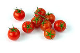 Lycopersicon lycopersicum 'Mary's Cherry', Mary's Cherry Tomato