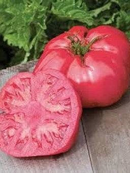 Solanum lycopersicum 'Irish Pink', Irish Pink Heirloom Tomato