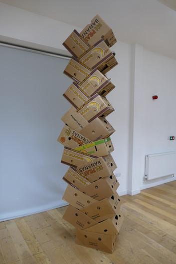 Stacked Banana Boxes