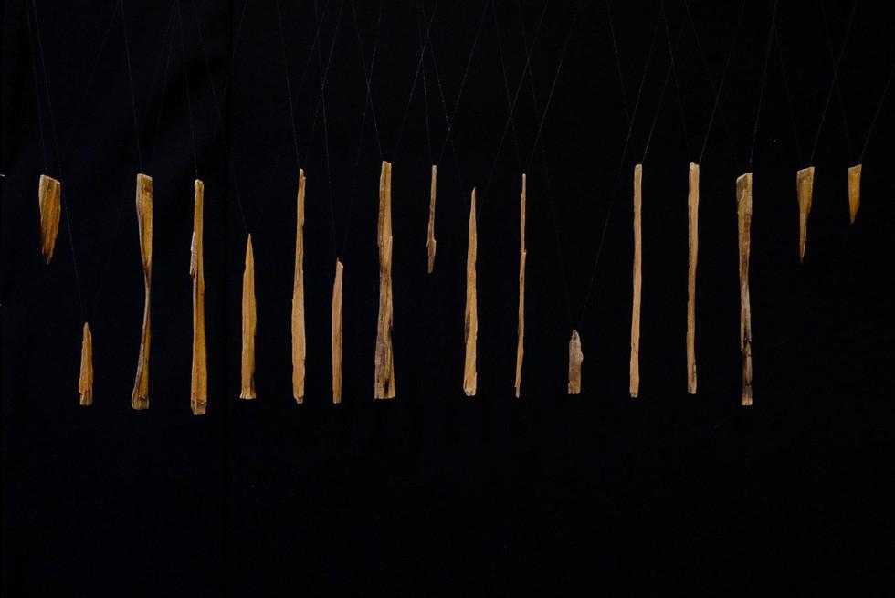 Segmented Driftwood