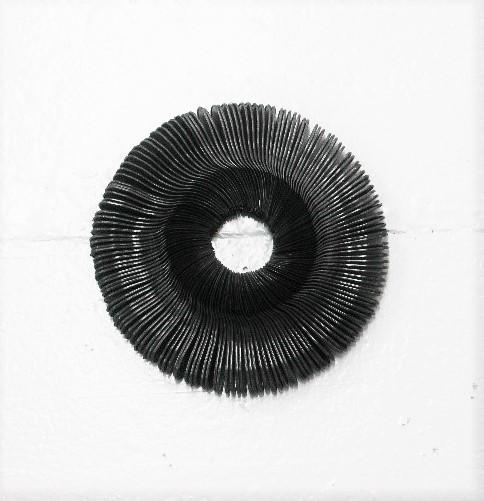 Ring of Sporks