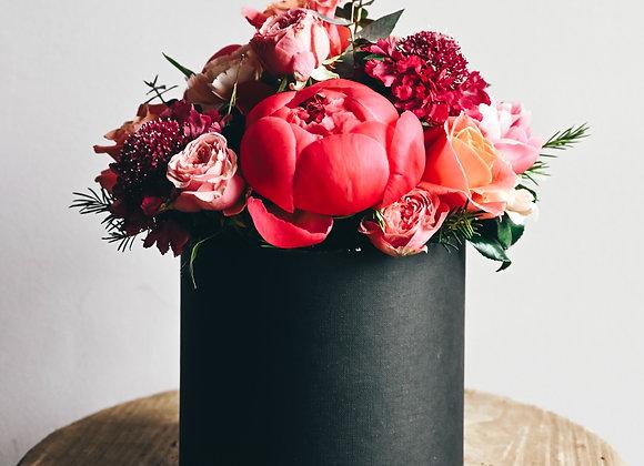 Flower Box Coral