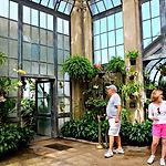 longwood-gardens-2774058_1920.jpg