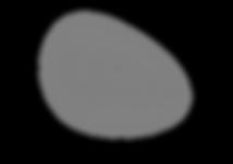 Soft Republick Logo-01 50% grey.png