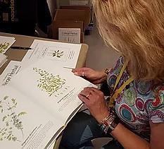 Illustrated College Herbal Book.webp
