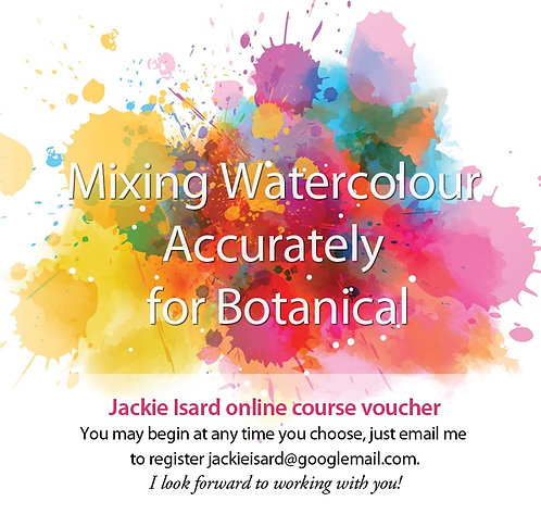 Mixing Colour Gift Vouchers  - The perfect Christmas or birthday gift!