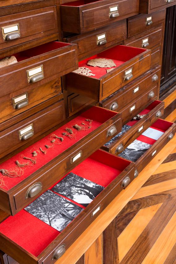 Habitar um armário com guardados e lemb