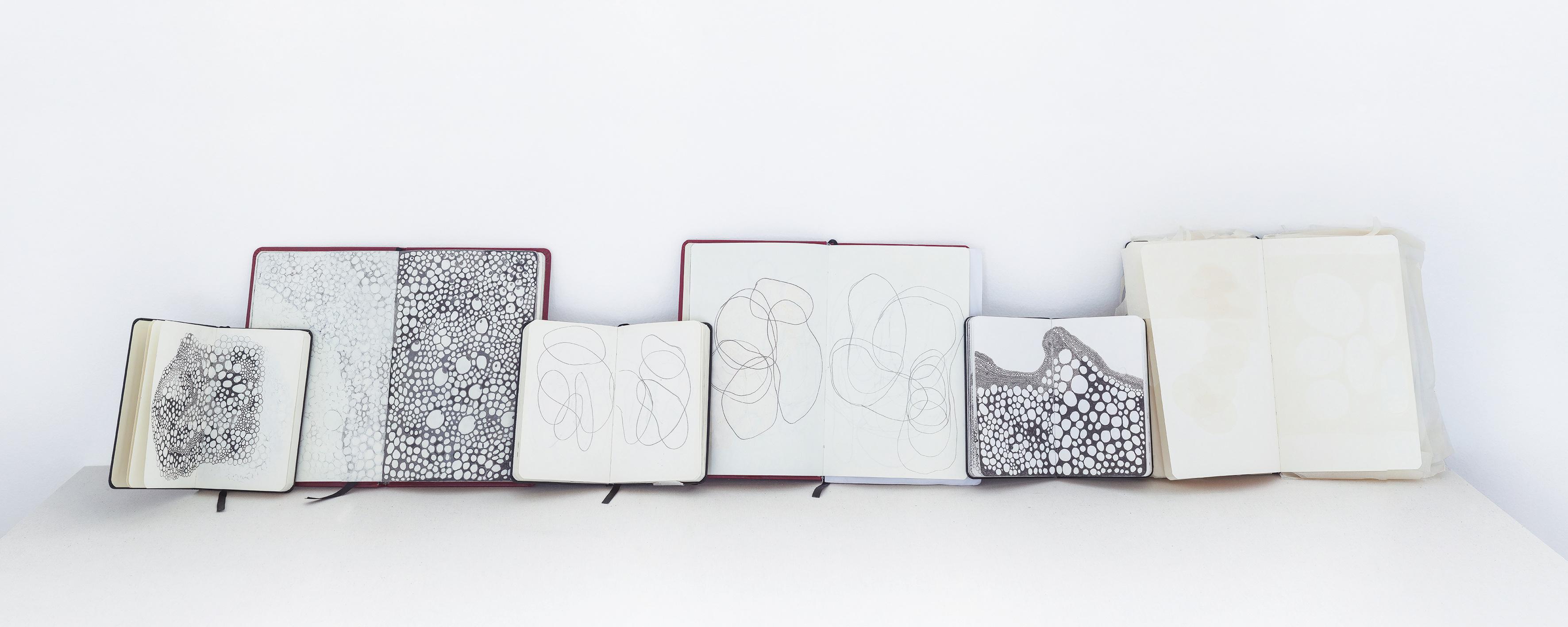 Cadernos, 2014