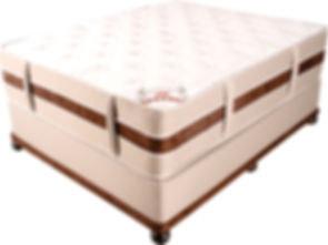 spine sensation bed.jpg