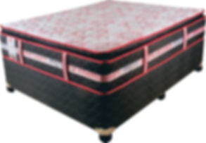 spinal health bed.jpg