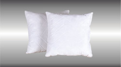 Set of 2 Scatter Pillow