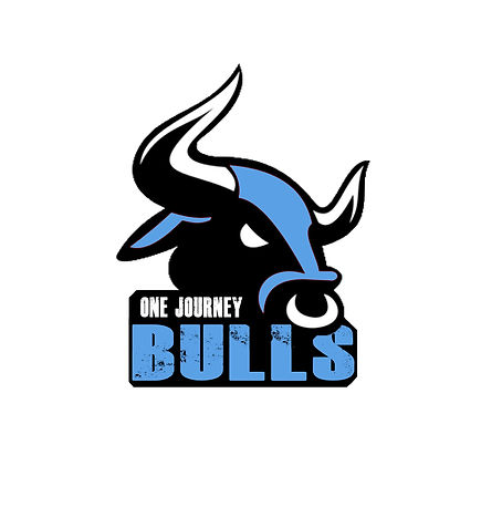 One Journey Bulls Logo 2.jpg
