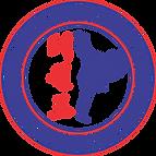Traditional Taekwon-Do Training