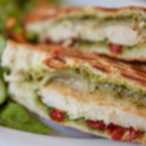 Turkey Panini with salad