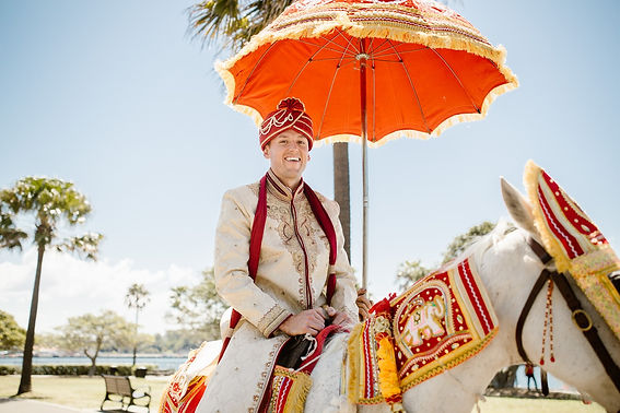 Indian Wedding Groom on Horse