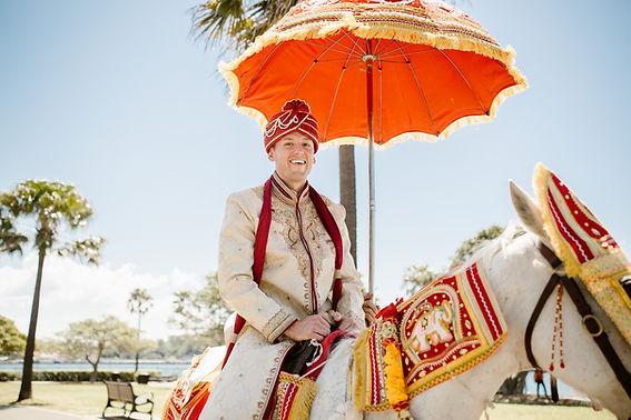 Indian Wedding Groom on Horse
