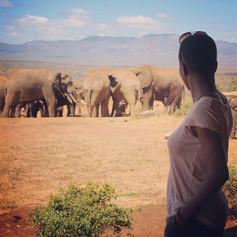 Tsavo West National Park, Kenya