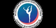 Художественная гимнастика.png