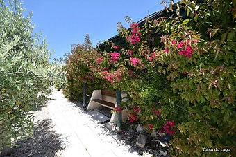 Garden of this best villa for family holidays