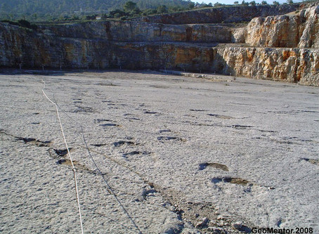 Large footprint of giant dinosaurs discovered in Portugal.