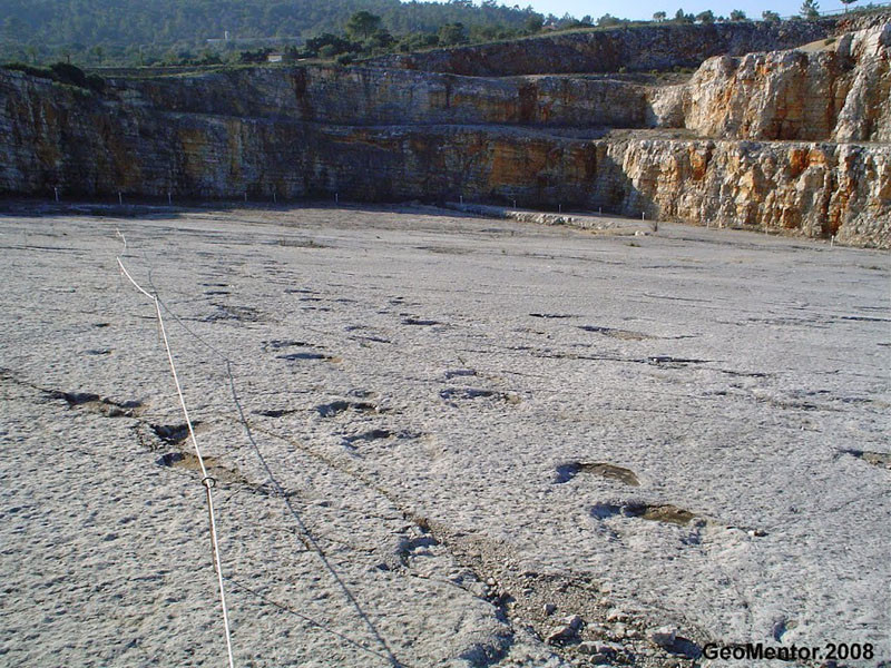 Footprint tracks made by big dinosaurs, at one hour from Casa do Lago