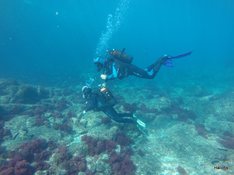 adapted scuba diving for disabled, available near the villa casa do lago