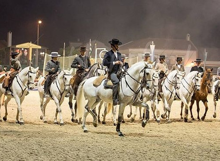 National Horse Fair, very important annual event, held in November in Portugal.