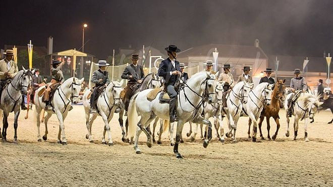 Horse Formation in action, attending the International fair of Lusitano Horse, Portugal