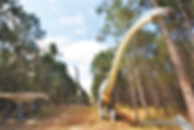 Giant Dinosaur recreation at Dino Park, Lourinhã, Portugal