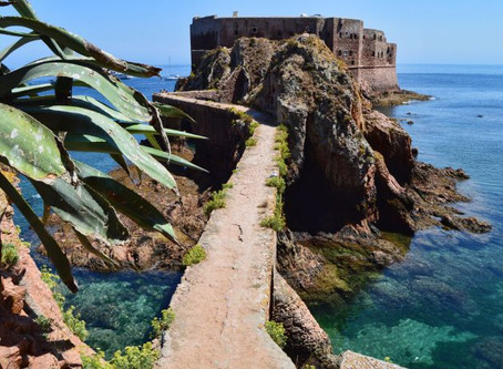 The UNESCO natural reserve of Berlenga Island and Archipelago, in Portugal.