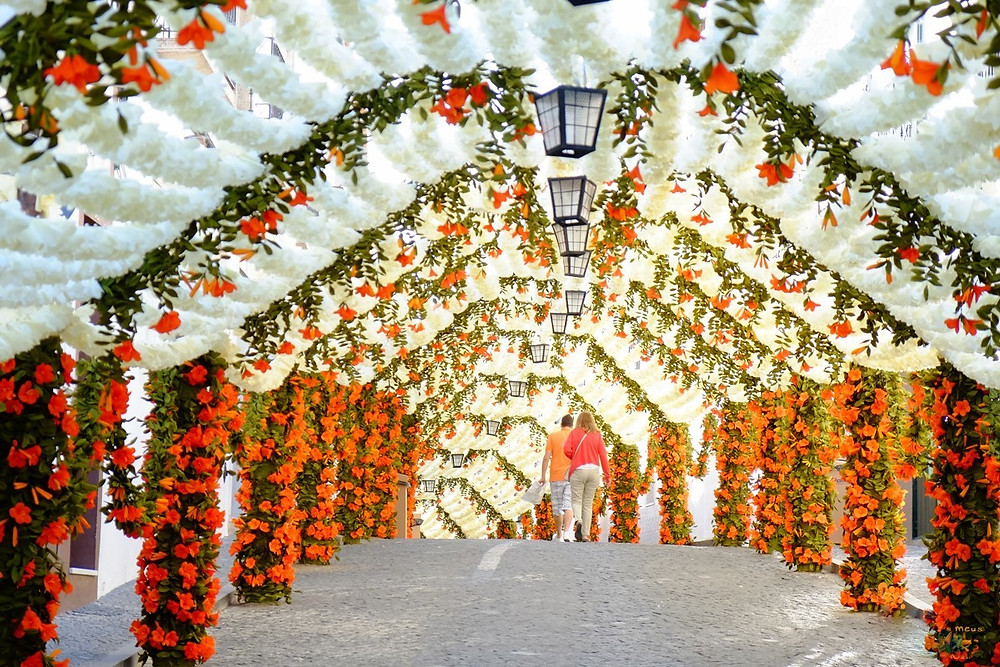 Stay at Casa do lago to visit the Flowers Festivities in Campo Maior, Portugal