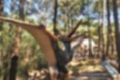Giant Flying Dinosaur, a bird ancestor