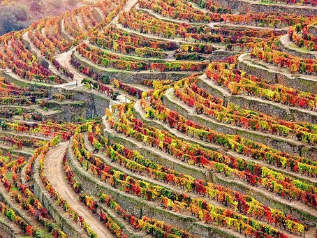 The Douro River UNESCO protected landscapes and English textiles, are they related?