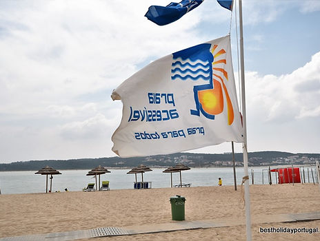 Flag of disabled accessible beach
