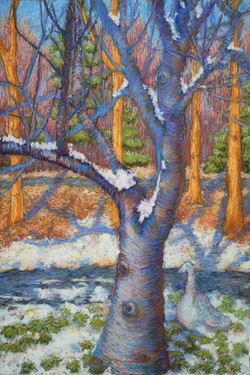January Thaw_Pastel on Paper_17 x 11.5
