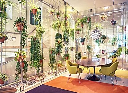 Espace d'accueil végétalisé très lumineux et convivial, Mur'mures Déco, décoratrice d'intérieur à Toulouse et Montauban, propose des prestations de décoration pour accompagner les professionnel dans le 31 et le 82.