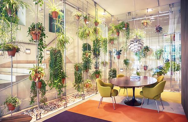 Plant gevuld hedendaagse kantoorruimte
