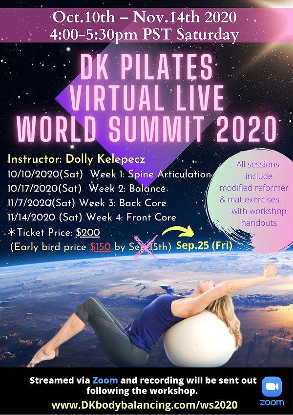 World Summit 2020 Workshop Extended.jpg