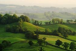 Awliscombe, Devon