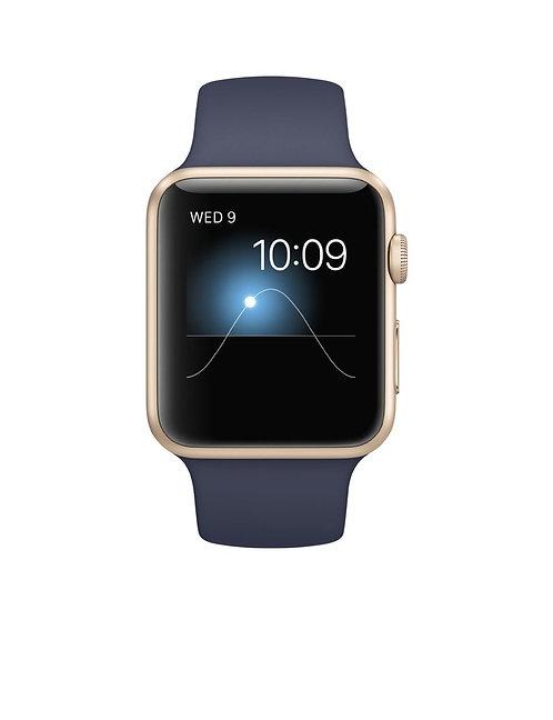 Apple Watch Sport 42mm Gold Aluminum Case