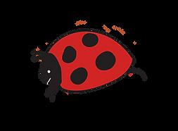 Popup Picnics Ladybug
